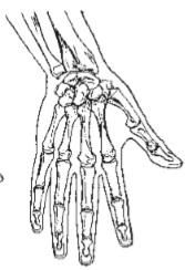 طراحی دست _ آموزشگاه نقاشی